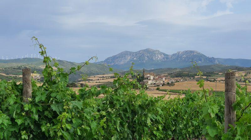 Pequeñas grandezas en la Sonsierra de Navarra